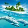 DOLPHİN WALLPAPERS