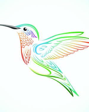 Simple Hummingbird Drawing