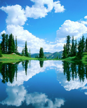 Reflections on Water HD Wallpaper