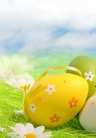Easter-Eggs-HD-Wallpapers-14