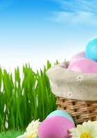 Easter-Eggs-HD-Wallpapers-19