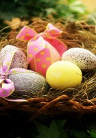 Easter-Eggs-HD-Wallpapers-34