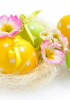 Easter-Eggs-HD-Wallpapers-53