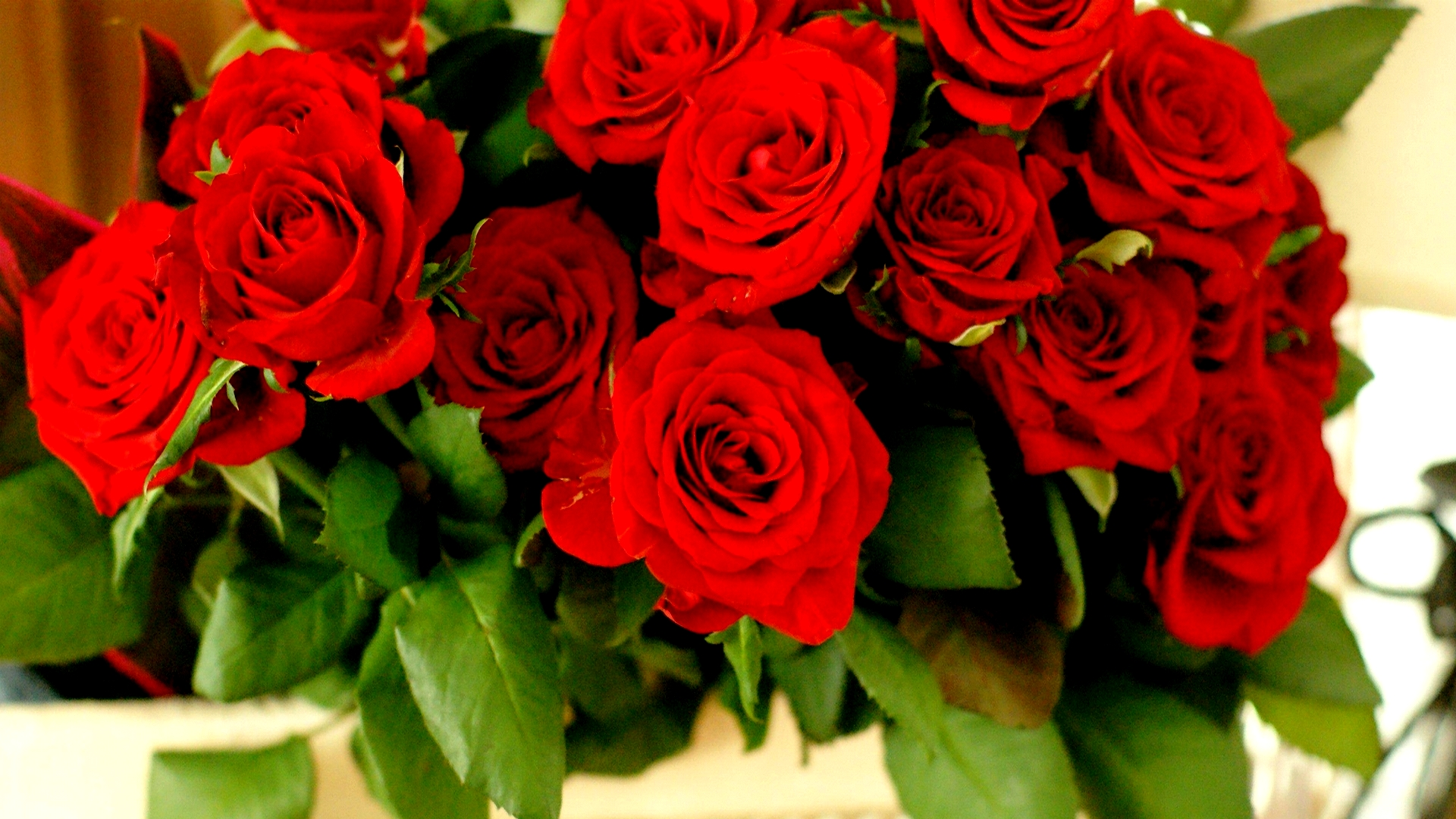 Red Roses Tumblr Background-23 | HD Wallpapers, HD images ...