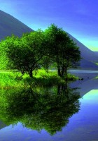 reflections on water-12