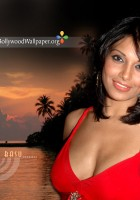 Bipasha-basu-wallpaper-8.jpg