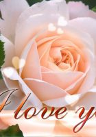 I-love-you-flowers-images-1.jpg